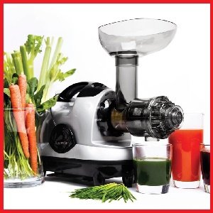 best masticating slow juicers 2018 reviews
